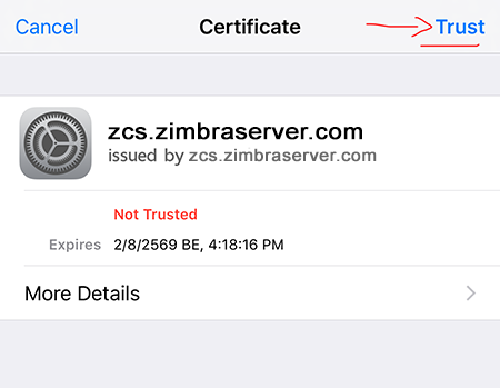 "Trust"" for Accept Zimbra SSL Certificate"